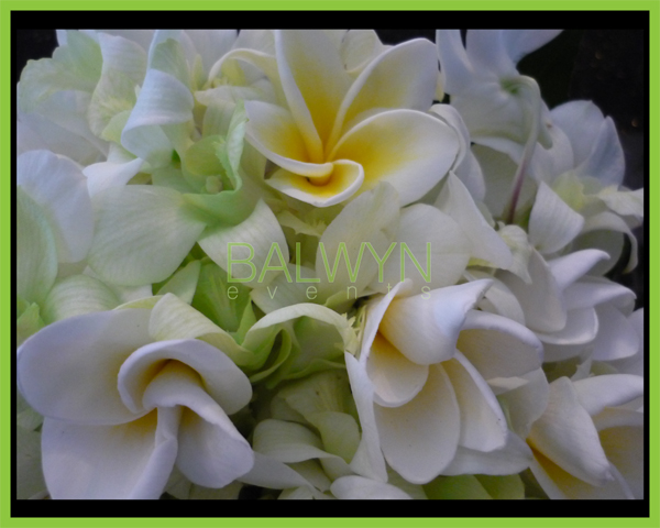 Wedding Bouquet q